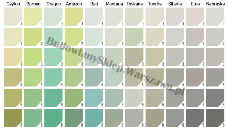 Tynki Ceresit pełny Silkon CT74 wzornik kolorów FOREST